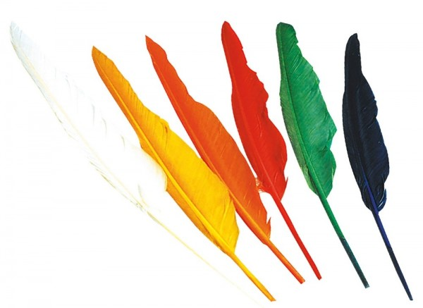 Colorful feathers set, 12 pieces