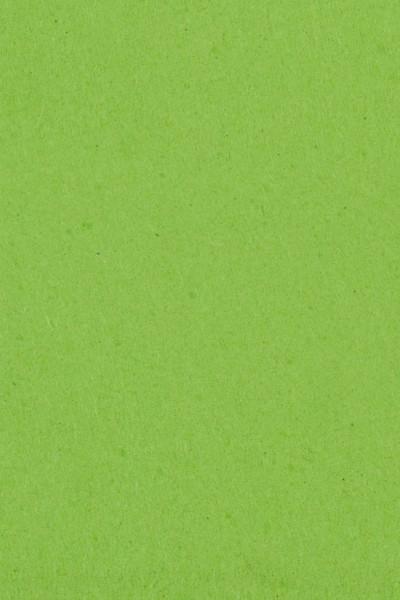 Einfarbige Papier Tischdecke Kiwi Grün 137x274cm