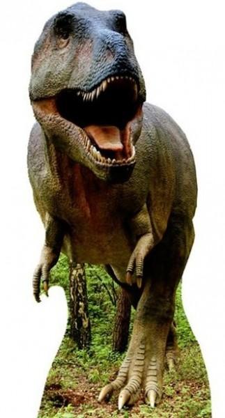 Tyrannosaurus Rex cardboard display 1.93m