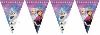 Frozen Nordlicht Wimpelkette 2,3m