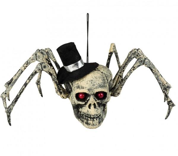 Teschio a ragno decorazione Halloween
