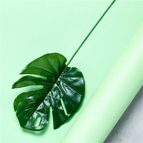 12 Tropische Palmblätter