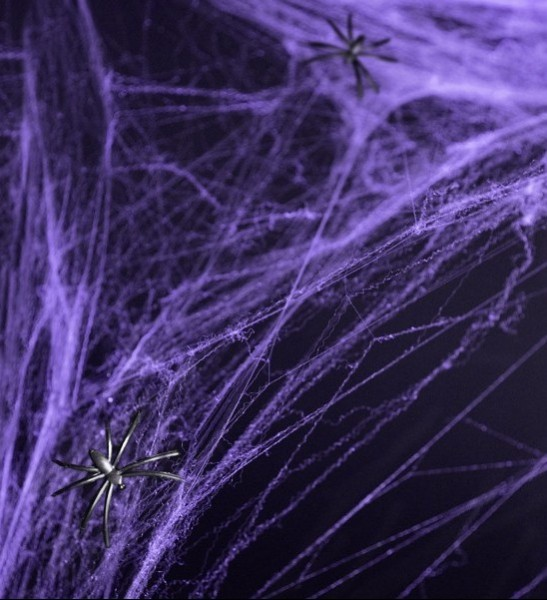 Toiles d'araignées Carlos Halloween Violet 60g