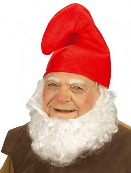 Dwarf Hat Red