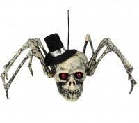 Schauriger Spinnen Totenkopf