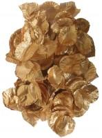 144 Goldene Rosenblätter Flammende Liebe