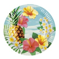6 Hawaii Party Teller 23 cm