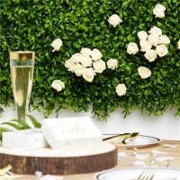 8 Deko Rosen English Garden champagner 4cm