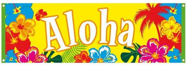 Banner grande Aloha Hawaii 74 x 220 cm