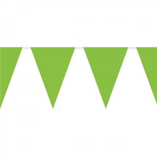 Guirlande de drapeaux verts 10m