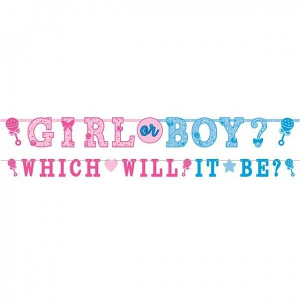 2 guirlandes baby shower garçon ou fille
