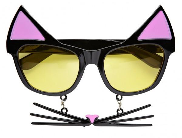 Lustige Kätzchen Brille Mit Schnurrhaaren