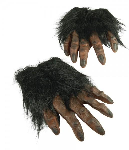 Haarige Schimpansen Hände