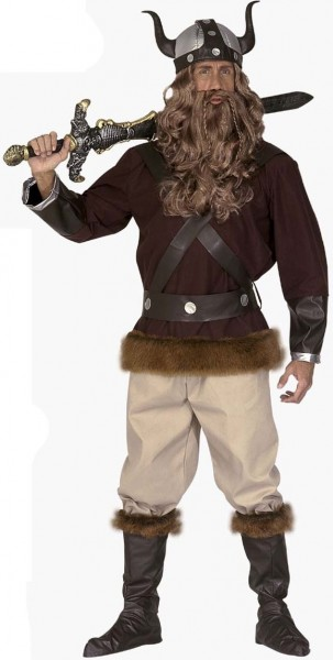 Halvar the Viking Costume Deluxe