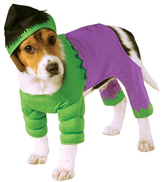 Hulk Kostüm Für Hunde