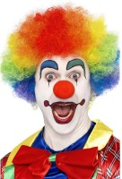 Kunterbunte Clownsperücke Rainbow
