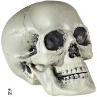 Ausgehöhlter Deko Totenschädel 21cm
