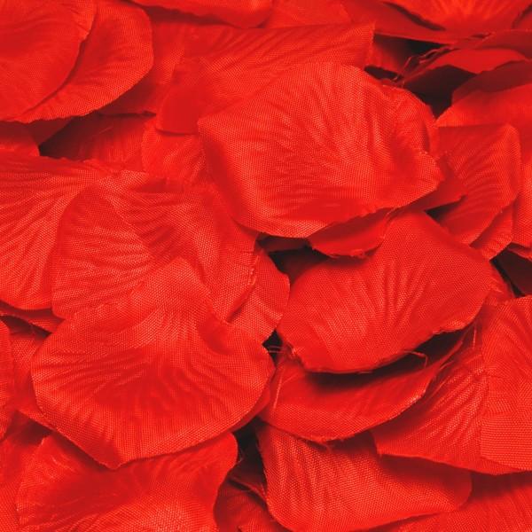 144 pétales de roses rouges aiment les flammes