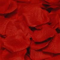 144 Weinrote Rosenblätter Flammende Liebe