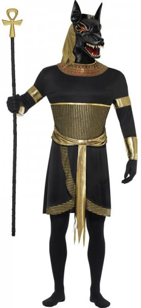 Machtig Halloween Anubis-jakhalskostuum