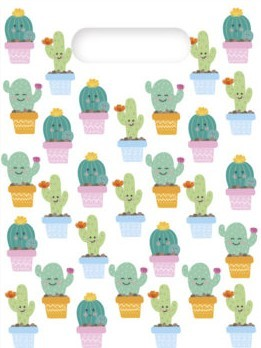 6 bolsas de regalo Happy cactus