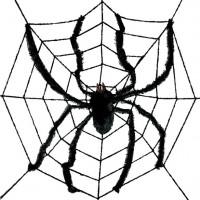 Riesen Halloween Spinnennetz mit Spinne 2,4m