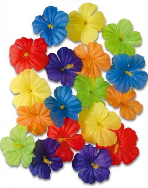 18 coloridas flores decorativas de Hawaii
