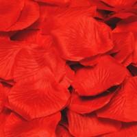144 Rote Rosenblätter Liebesflammen