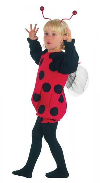Kleines Marienkäfer Pünktchen Kostüm