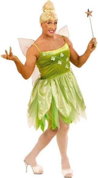 Forest fairy Wilma men's costume