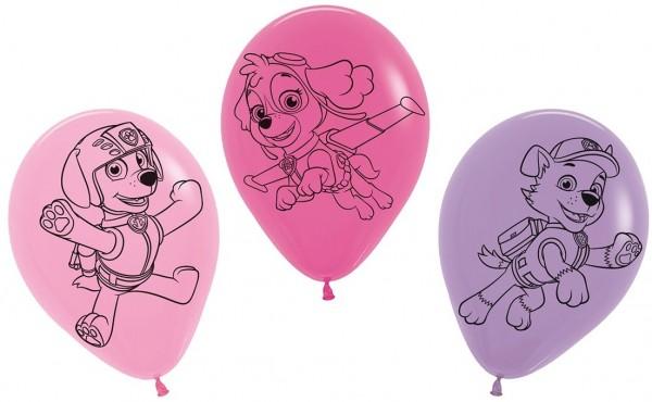 5 ballons Paw Patrol Friends Skye 30cm