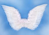 Engelflügel Rafael 75x45cm
