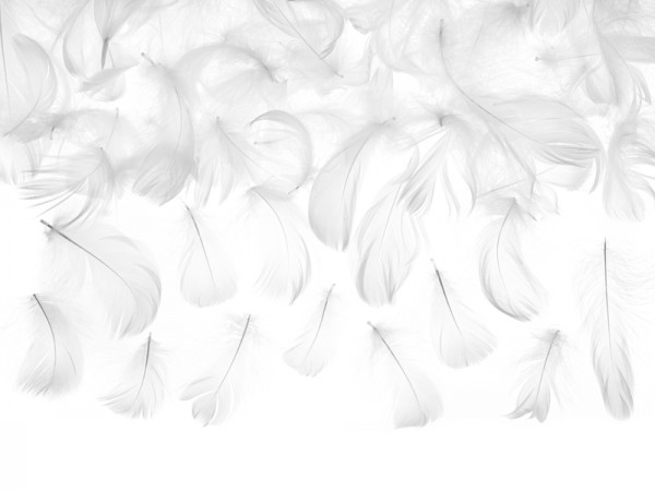 3g decorative feathers white 5-8cm