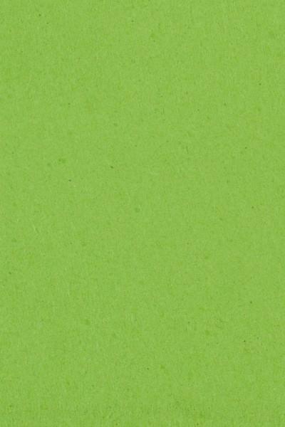 Tovaglia in rotolo kiwi-verde 1 x 30,5m
