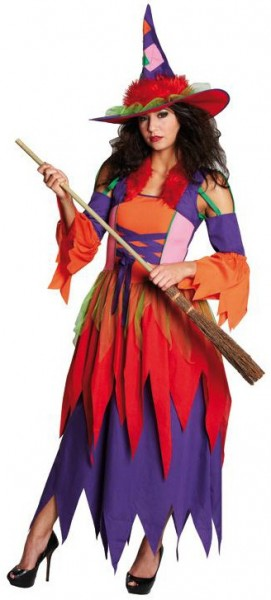 Rainbow wonderland witch ladies costume